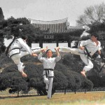 Taekwon-do: Korean Art of Self-Defense