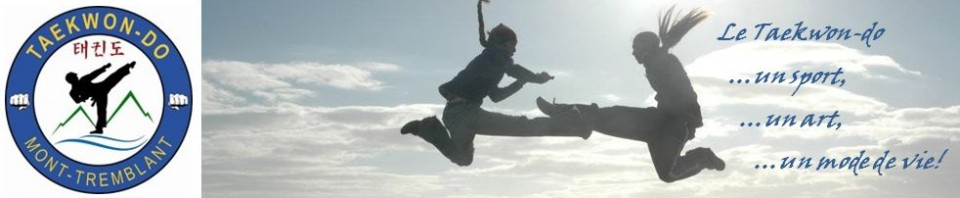 cropped-Sunset-Flying-Kick-web2.jpg
